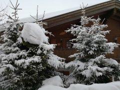 almperle_tr_winter.jpg