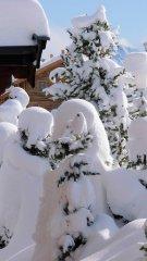 Winterimpression.jpg
