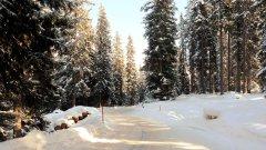 strasse_im_winter_3.jpg